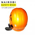 Protecta Helmet